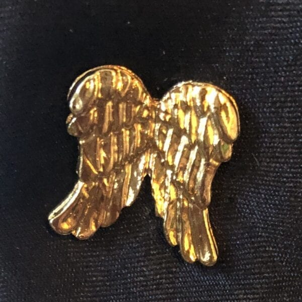 Gold angel wings pin